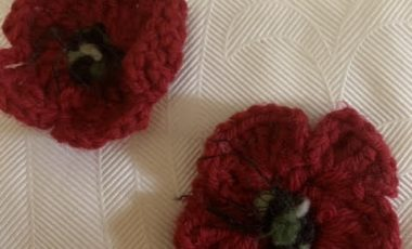 "Albury Anzac 2020 calls for Poppies ""shoulder to shoulder"""