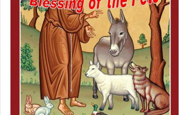 Blessing of Pets – St Francis Day